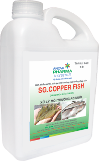SG.COPPER FISH